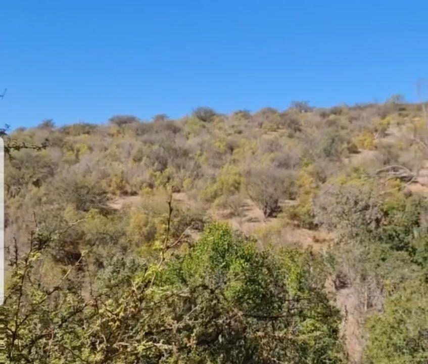 Torres Propiedades vende terreno en Quilpué