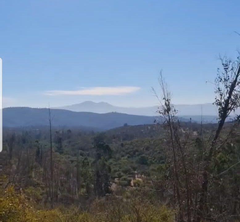 Terreno en Venta en Quilpué de 5.000 mt2
