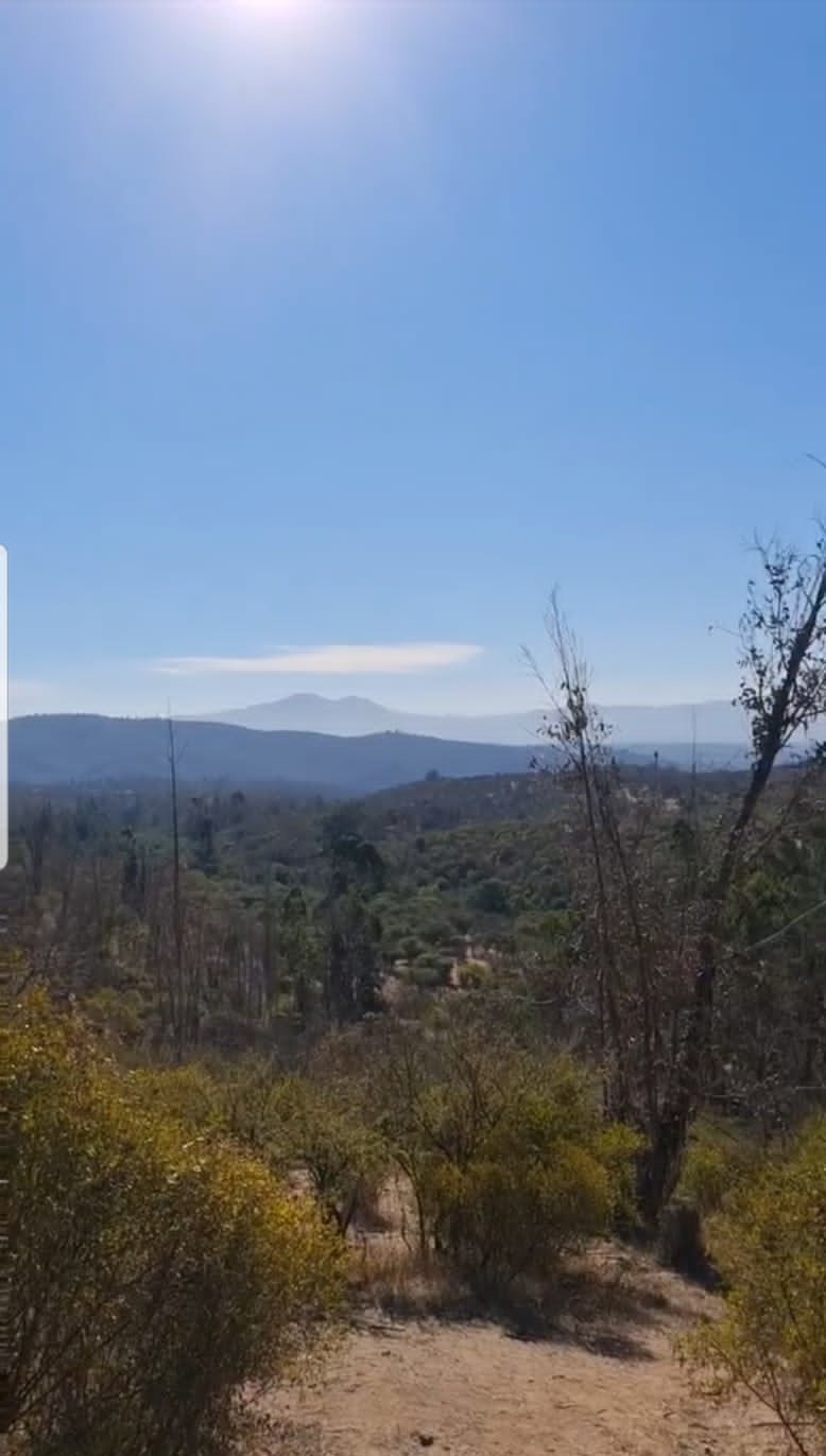 Terreno en Venta en Quilpué de 5.000 mt2.